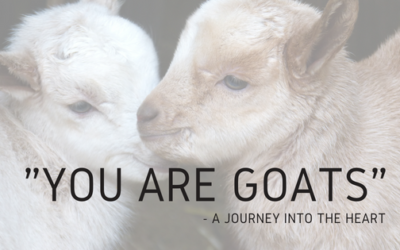 """You are Goats"" – A Journey Into the Heart"